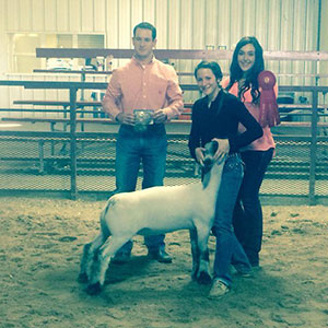 Dowell Show Lambs > Winners